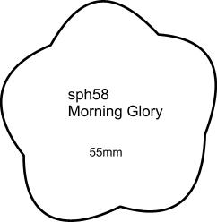 sph58 Morning Glory